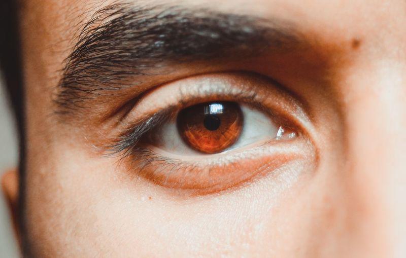 Cropped portrait of man eye