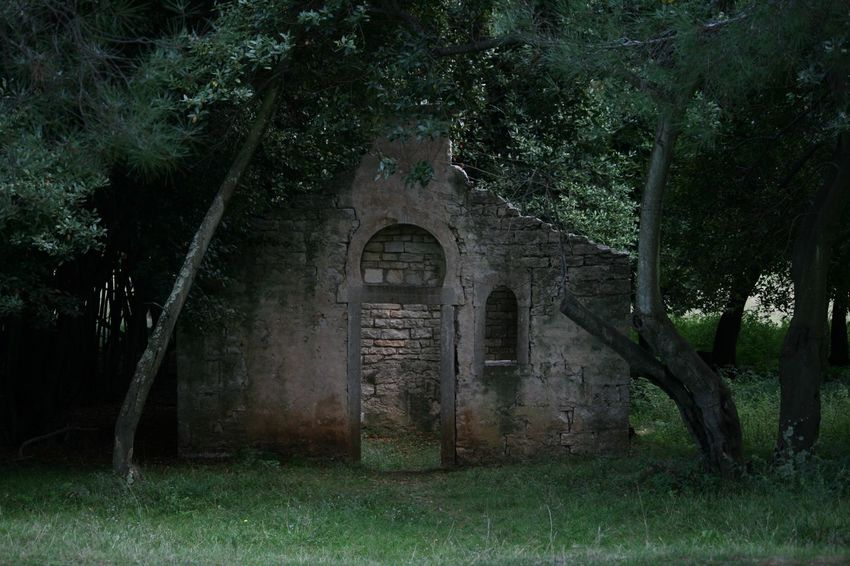 Abandoned Architecture Building Building Exterior History Old Ruined Ruins Stone Stone Ruins Wildlife & Nature