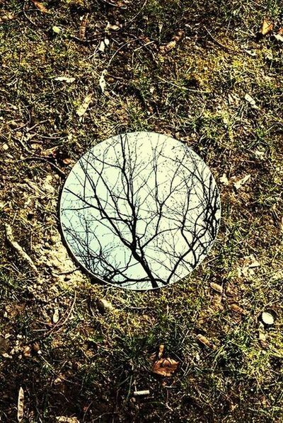 EyeEm Best Shots Nature Forest Mirror Reflection Riddle Depth Trees