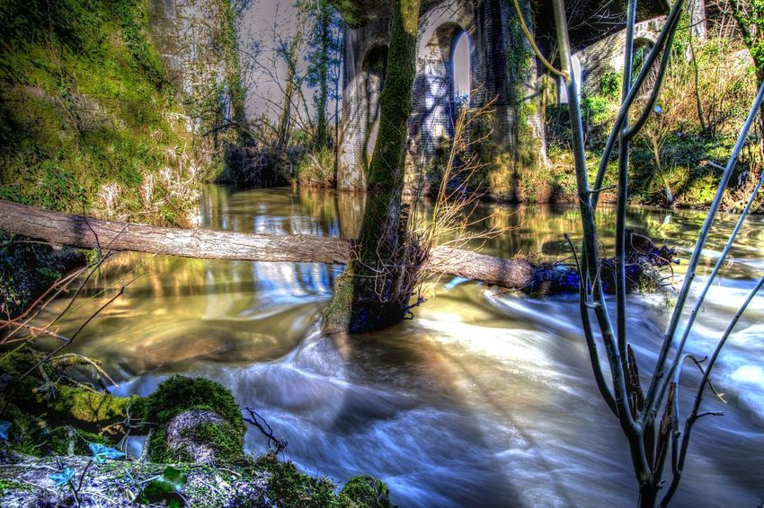 Magical river Water_collection River Magical Fairytale  Check This Out Scenery Shadows & Lights England Beautiful Nature