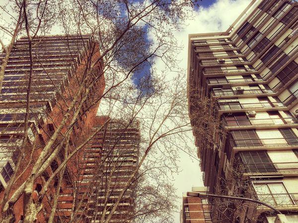 Arquitecture Buenosaires The Architect - 2018 EyeEm Awards The Street Photographer - 2018 EyeEm Awards