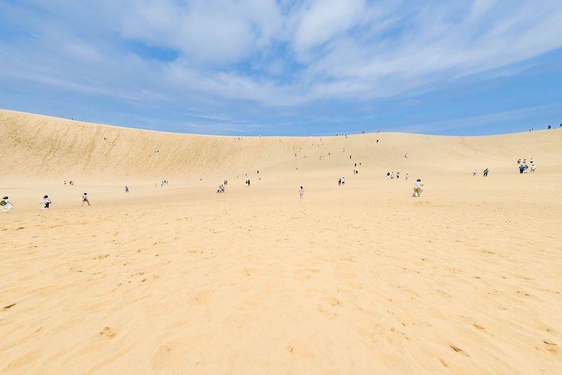 Nikon Japan EyeEm Best Shots EyeEm Best Edits Landscape EyeEm Superbview Nature 鳥取砂丘 鳥取県