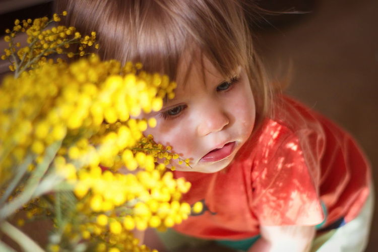 Child Childhood Mimosa Aromatic Sunlight Sunday People Portrait International Women's Day 2019 Women Blond Hair Blonde Girl Babygirl Flowers Flowerporn Yellow Flower Blue Eyes Pollen Sniffing Sniff PeopleZiesel777 Blink Squinting Sadness Close-up One Person Headshot Hairstyle Yellow Flower Innocence Females My Best Photo Springtime Decadence