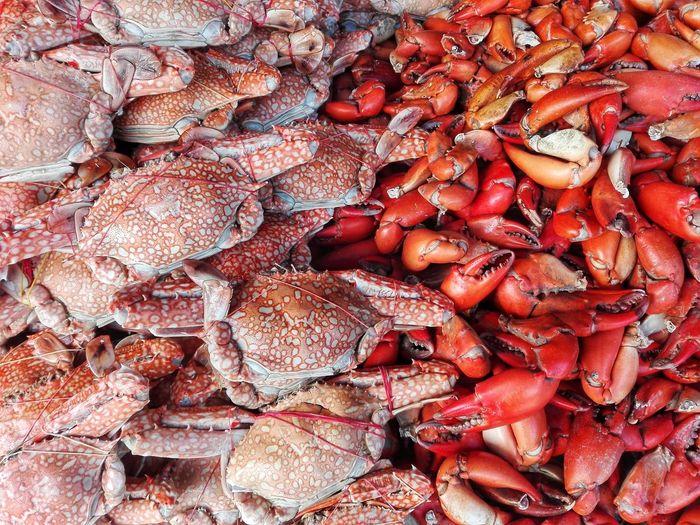 Full frame shot of crabs for sale at market