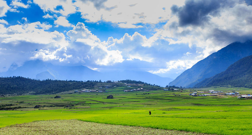 Mountain Village And Farm Agriculture ASIA China View Cloud - Sky Country Life Farm Life Farmhouse Field Grass Green Color Hills And Valleys House Landscape Meadow Mountain Nature No People Outdoors Pasture Pasture Rice Paddy Rural Scenics Travel Destinations Village View