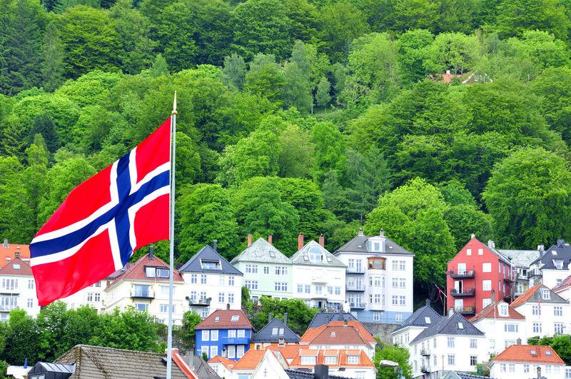 Housings between the trees in bergen Norwegian Bergen Norway