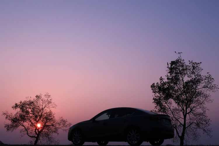 Tree Sunset Silhouette No People Sky Beauty In Nature Outdoors Nature Night クルマ 夕陽 夕焼け Nature EyeEmNewHere EyeEm Nature Lover Japan Photography 空 マツダ Mazda MaZda3 アクセラ Japan ソラ Skylovers Sky And Trees