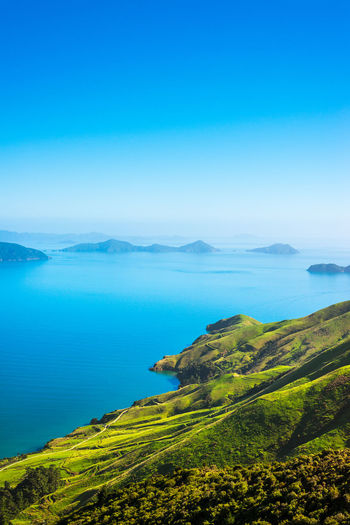 Amazing view in Marlborough Sounds Travel Beauty In Nature Blue Day Environment Green Color Idyllic Land Landscape Mountain Nature New Zealand No People Ocean Outdoors Plant Scenics - Nature Sea Sky Tranquil Scene Tranquility Travel Destinations Water