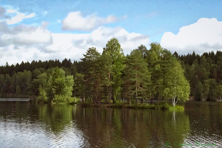 Sognsvann Lake Lago Oslo Norway IPhoneography Iphoneonly Iphone6 Iphonephotography