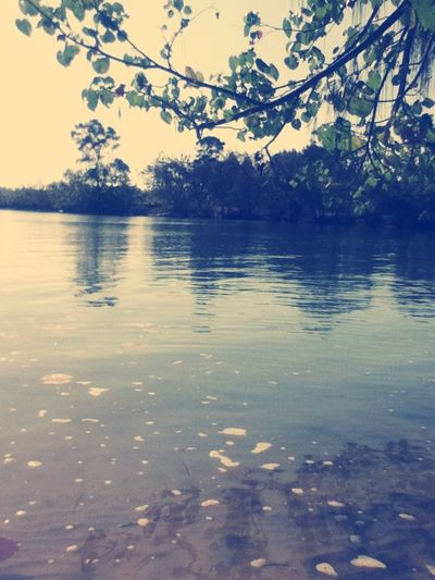 Calm water <3