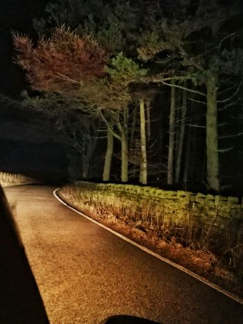 Night Forest Entwistle Reservoir Tree Night Road No People Outdoors Landscape Nature