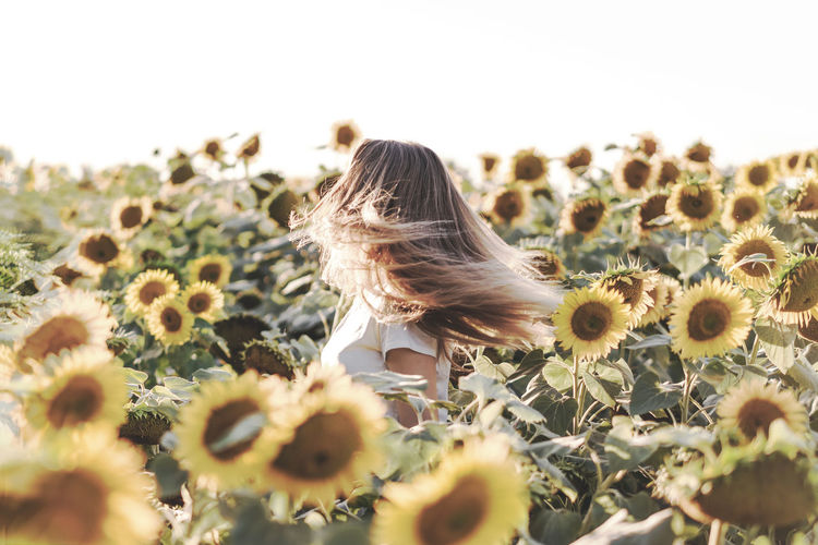 Rear view of woman on sunflower field against sky