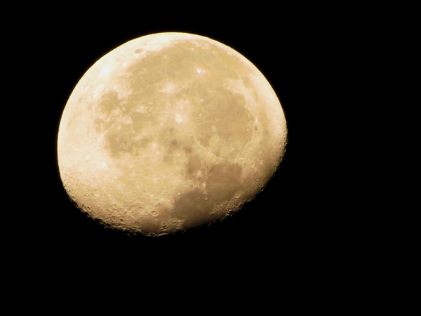 Moon Faces Chihuahua, Mexico Leo Sáenz Astronomy Beauty In Nature Clear Sky Moon Moon Surface Nature Night No People Planetary Moon Scenics Sky Space The Week On EyeEm