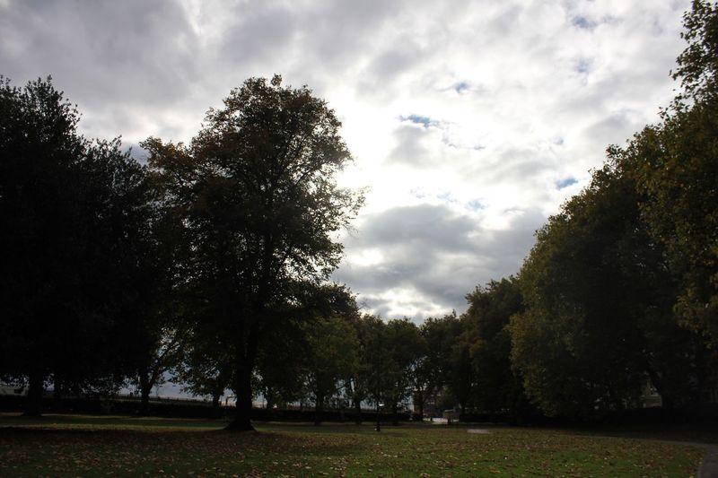 Southampton Sky Tree