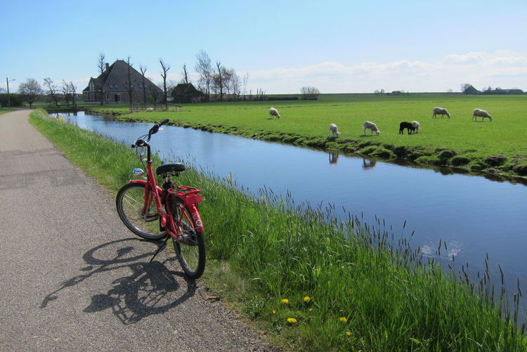 Bicycle on field by lake against sky