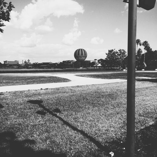 DisneyWorld Downtown Disney Black And White City Day Nature Sky No People Tree Outdoors