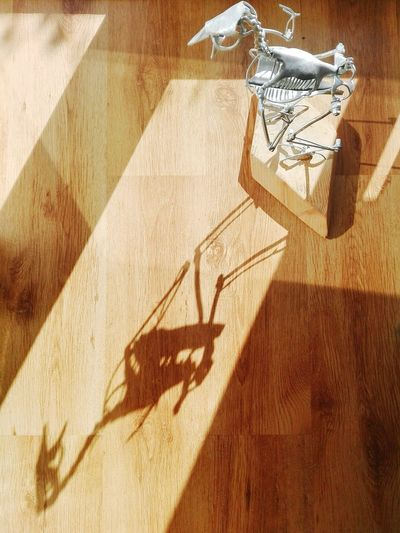 Interior Style A Birds Eye View Light And Shadow, My Works Metalic Bird Skeleton Cold Forged Steel Remnant, Smartphone Photographer Smartphone Photos Smartphone Photography A Bird's Eye View