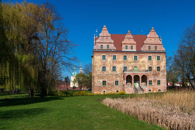 Castle in Polska Cerekiew, Poland Polska Cerekiew Poland Castle Groß Neukirch Building Exterior Architecture Plant Tree Built Structure Building Grass Sky Blue Nature The Past Travel Destinations History Day No People Travel Tourism Outdoors Residential District Tower