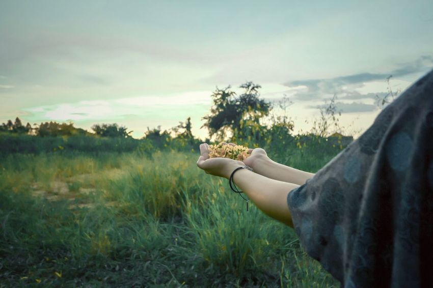 One Person Plant Human Body Part Grass Sky Nature Land Leisure Activity Real People Body Part Field Low Section Lifestyles Day Relaxation Casual Clothing Human Hand Holding Hand Outdoors Human Limb Jeans Yellow Flower Up Close Flower In Hand Sunset