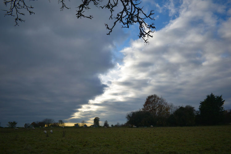 Avebury at dusk