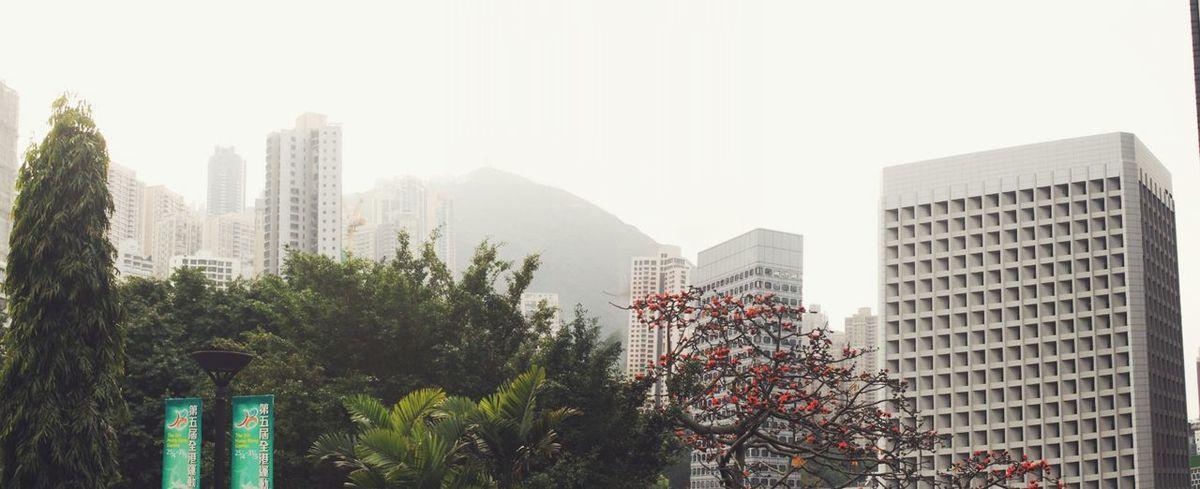 I Love Hong Kong Panorama