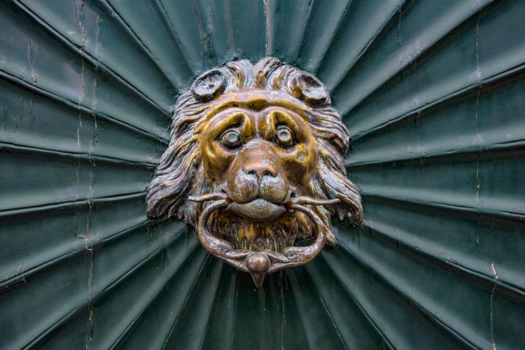 Detail Shot Of Lions Head Door Knocker