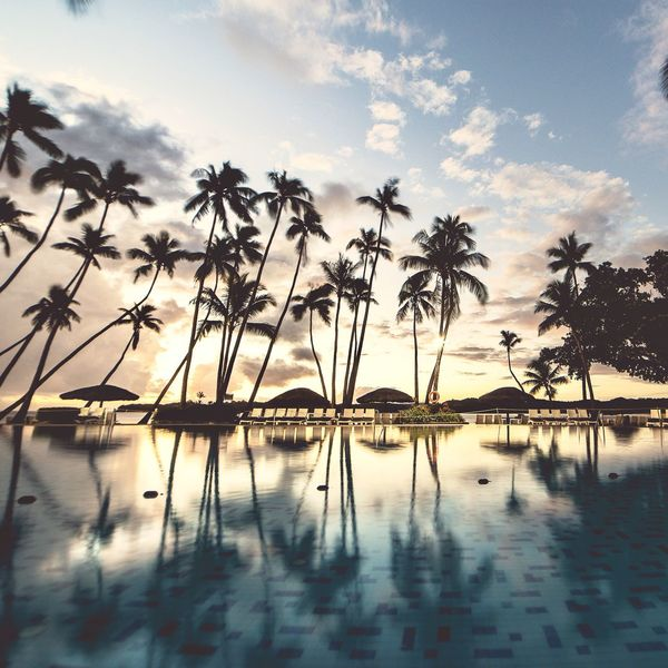 Sunset at poolside Reflection Palm Tree Sunset Water Sky Nature Tranquility Tree No People Outdoors Day