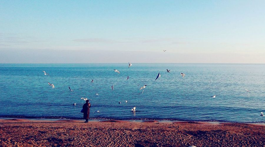 Sea And Sky Bright Sky Amazing Evpatoria Sea First Eyeem Photo Photo Photography Photolikes #love #cute #photo #likes #likeforlikes #likeforfollow #me #followfollowfollow #likesforlikes #likeforshoutout #trocolikes #like #beautiful #frases #instalike #sdv #instagood #follow #followmeplease #insta #like10like #instalove #color #hmu #pe