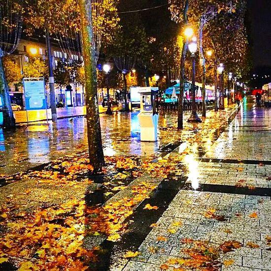 champs Elysees Paris, autumn night.http//www.ChampsElysees-Paris.com ChampsElyseesParis Champselysées Champselysées Champs-Élysées  Paris ❤ ParisByNight Paris, France  Paris Je T Aime Paris