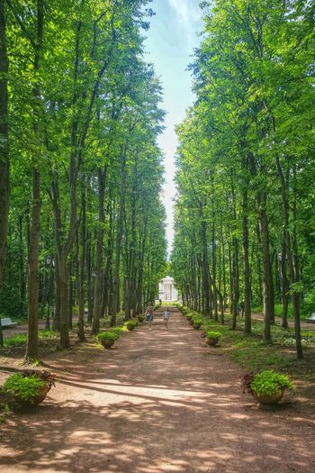 Neskuchniy Garden (park near Gorky park), Moscow, Russia.