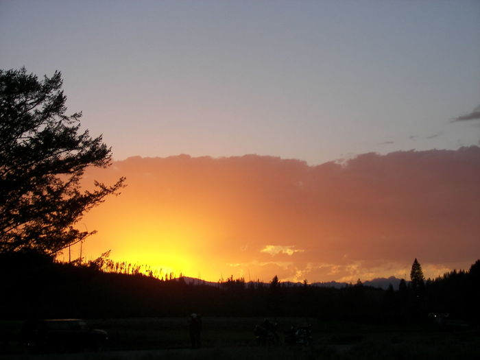 EyeEmNewHere Yellowstone National Park Beauty In Nature Copper Colored Nature Orange Color Outdoors Scenics - Nature Silhouette Sky Sunset Tranquil Scene Tree HUAWEI Photo Award: After Dark