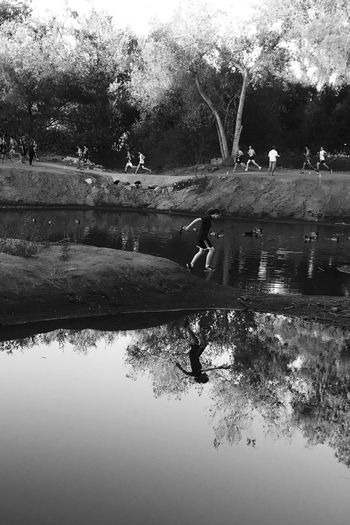 Running along the pond Water Reflection Nature Lake Monochrome Blackandwhite Kit Carson Park