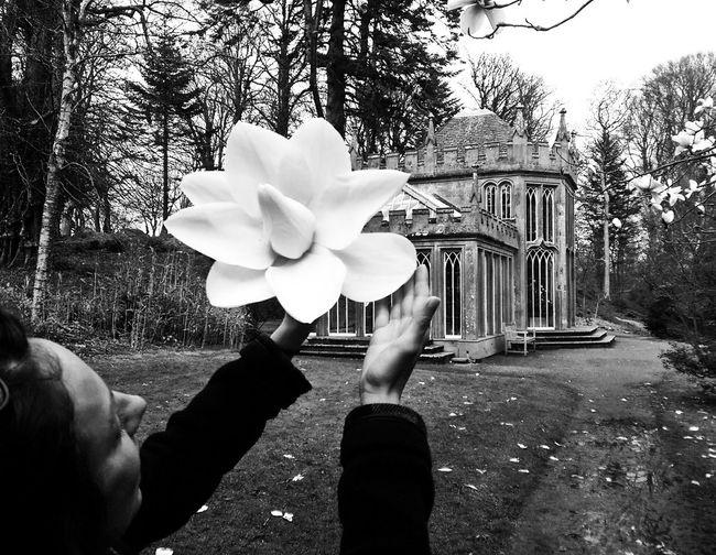 Travel Black & White Flower Cawdor Castle Black And White