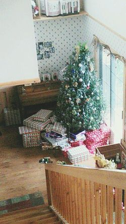 Indoors  Tree Plant Freshness Nature Christmas Gifts Life Family First Eyeem Photo