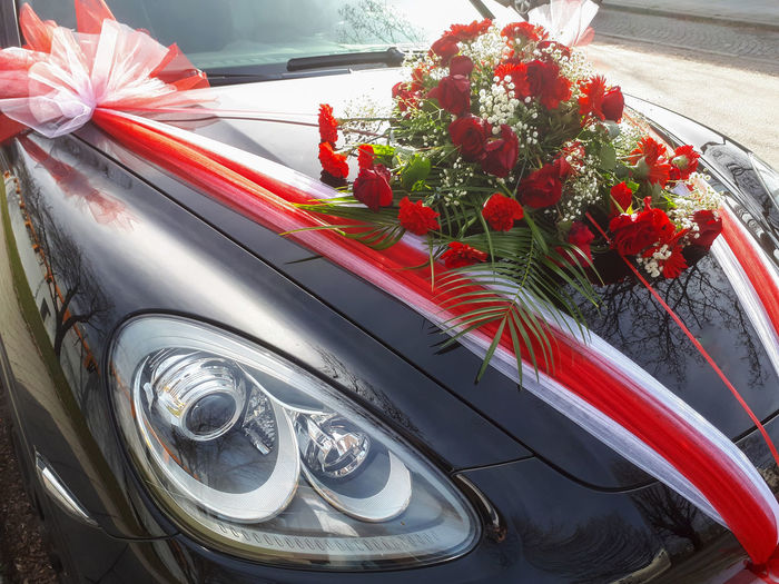 High angle view of red flowering plants on car windshield