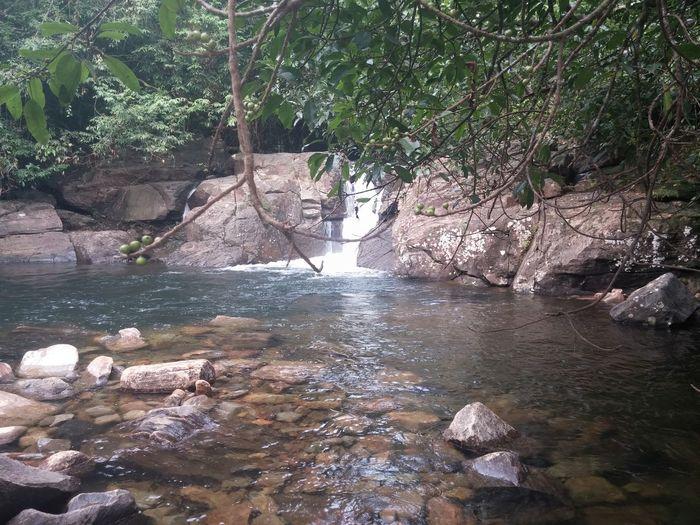 Nature SriLanka