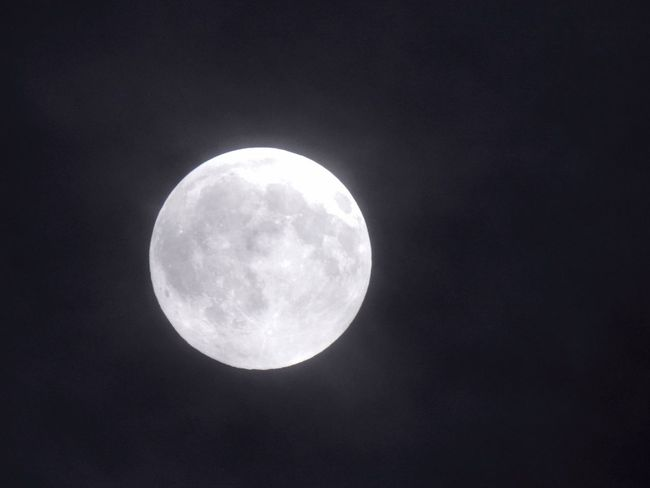 Astronomy Beauty In Nature Discovery Full Moon Low Angle View Majestic Moon Moon Shots Moon Surface Moon_collection Nature Night Nikon Coolpix P900 Nikon P900 Our Moon Outdoors Planetary Moon Scenics Sky Space Space Exploration Sphere Tranquil Scene Tranquility Zoomeffect