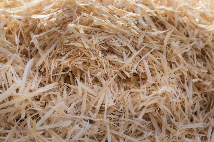 A pile of wood shavings with morning dew Agriculture Nature Background Texture Backgrounds Backgrounds Details Textures And Shapes Close Up No People Outdoors