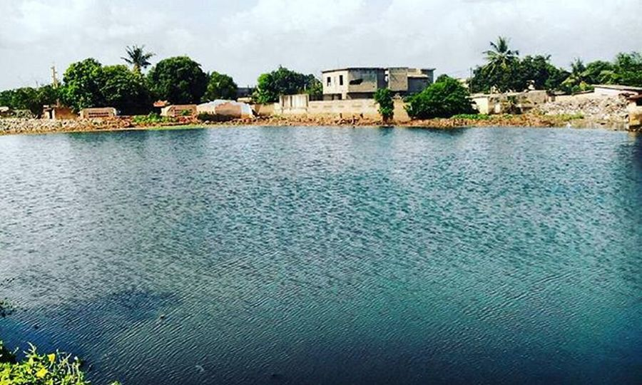 Artificial Lake of Agoé-Nyivé Lac Artificiel du canton d'Agoé-Nyivé. Photowalk by @ohaniceyt Team228 Afrigraphy AfricaPhotography Photography PhotoWalkTg Water Green Biodiversity Nature Lake Picofday Opengraphy OpenPhotograpy Africa WestAfrica Togo