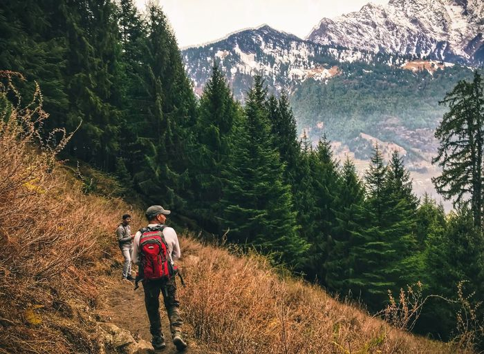 Forest Cover Mountain Hiking Real People Backpack Nature Lifestyles Adventure Beauty In Nature Mountain Range Hiker Scenics Vacations Forest Travel Tree