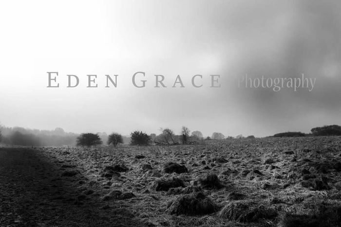 Landscape_photography EyeEm Best Shots - Black + White Misty Morning Winter Sun Sunrays