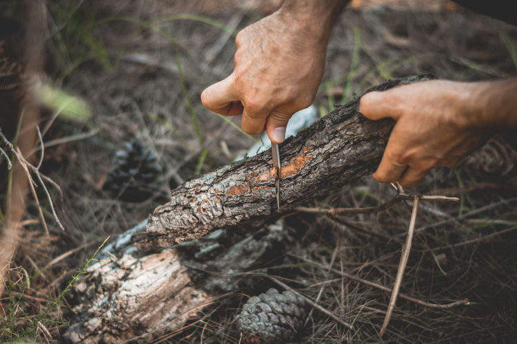 Cropped hand cutting firewood with knife in forest