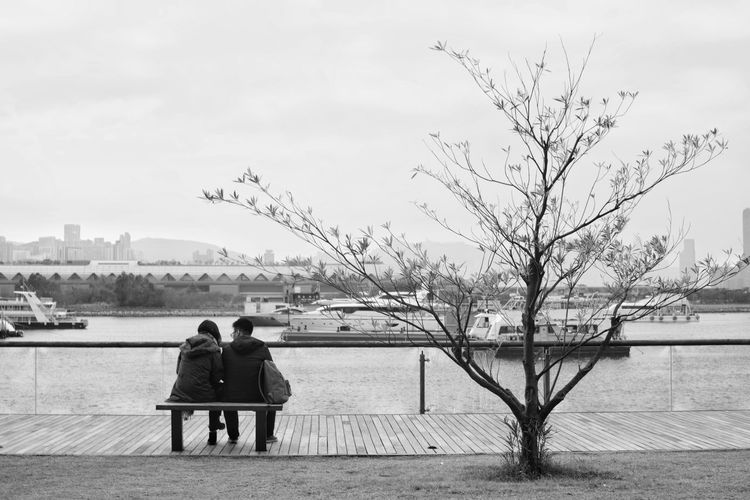 Rear view of couple sitting on shore against sky