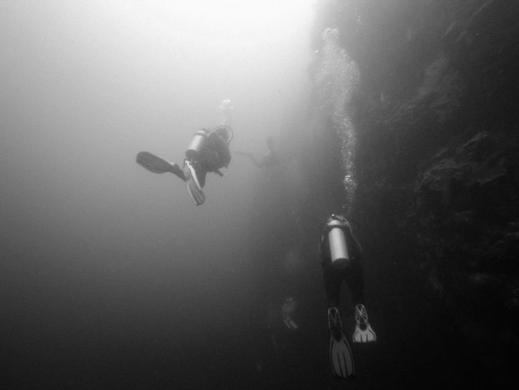 Wall dive at Tongo dive spot, Moalboal (Cebu, the Philippines) Adventure ASIA Black & White Cebu Exploring Extreme Sports Leisure Activity Lifestyles Nature Outdoors People And Places Philippines Real People Scuba Diver Scuba Diving Sea Life Sport Swimming Travel Travel Destinations Underwater Unrecognizable Person Vacations Fresh on Market 2016 Uniqueness