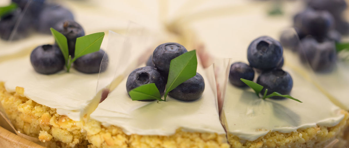 Blueberry Blueberry Cheesecake Blueberry Pie Close-up Day Food Food And Drink Freshness Fruit Healthy Eating Indoors  No People Ready-to-eat Sweet Food
