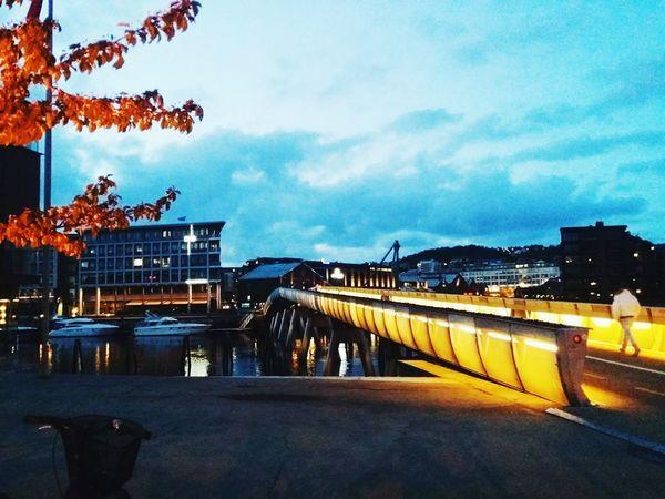 Trondheim City City By Night Night Night Lights Lights Bridge