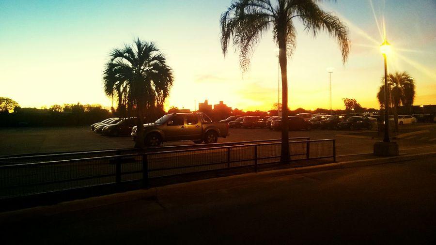 Palm Tree Sun Sunset Transportation Lens Flare Sunlight Sky Orange Color Lumia735