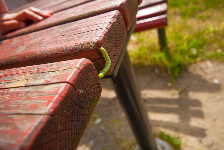 Close-up of old metal bench