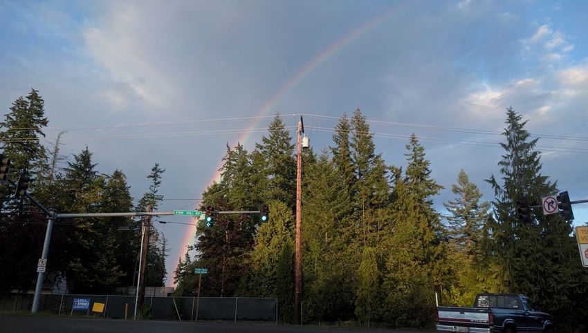 Tree Outdoors Sky Rainbow Low Angle View Nature No People Cloud - Sky Beauty In Nature Day Poulsbo