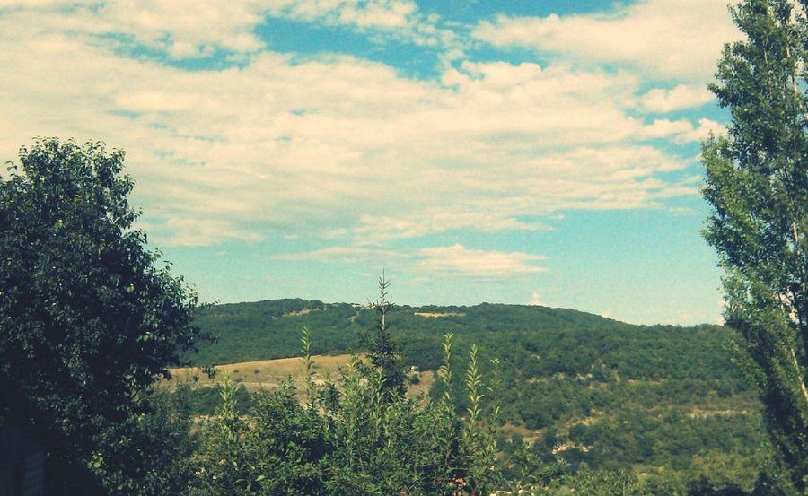 Blue Sky Landscape Summer 2014 ☀️ Landscape_Collection